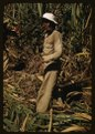 FSA borrower and participant in the sugar cane cooperative, Rio Piedras, Puerto Rico LCCN2017877769.tif