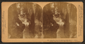 Fairyland, Magnolia Cemetery, Charleston, S.C, from Robert N. Dennis collection of stereoscopic views.png