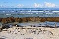 Fakarava - Ohavana côté océan.jpg