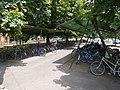 Felsőgöd train stop, sheltered bicycle racks, 2020 Göd.jpg