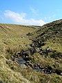 Ferly Burn - geograph.org.uk - 377774.jpg