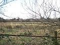 Field East of Blackheath, Llanteg - geograph.org.uk - 1160261.jpg