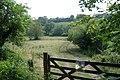 Field near Heskyn Mill - geograph.org.uk - 184082.jpg