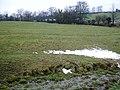 Field slopes to Thorsgill Beck - geograph.org.uk - 1671226.jpg