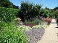 Filoli gardens - IMG 9313.JPG