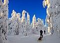 Finland 2012-01-28 (6833853072).jpg