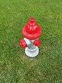 Fire hydrant 3.jpg