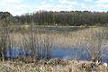 Fish ponds, Miaczynek (2).JPG