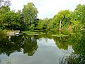 Fishing lake at Rotherwas 2 - geograph.org.uk - 1457680.jpg