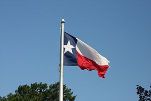 English: The flag of Texas flying in Austin