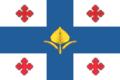 Flag of Kamennobrodskoe (Volgograd oblast).png