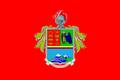 Flag of the Ecuadorian Army.png