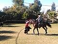 Flamenca y caballo - IMG 20181111 133713 346.jpg