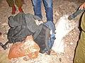 Flickr - Israel Defense Forces - Hashish Smuggled Along Israeli-Egyptian Border.jpg