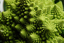 Flickr - cyclonebill - Romanesco.jpg