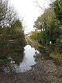 Flooded Footpaths - geograph.org.uk - 1134130.jpg