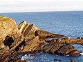 Folded strata, Pen-y-Holt Bay, S. Pembrokeshire. - geograph.org.uk - 1455661.jpg