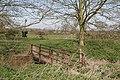 Footbridge, Green Lane, Marchington - geograph.org.uk - 396374.jpg