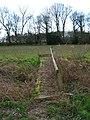 Footbridge near Caldicott's Wood - geograph.org.uk - 352659.jpg