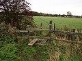 Footbridge near Fackley - geograph.org.uk - 286985.jpg