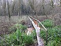 Footbridge over Marshland - geograph.org.uk - 1620925.jpg