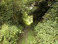 Footpath to Wallog - geograph.org.uk - 23366.jpg