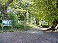 Forest Cycleway - geograph.org.uk - 1532962.jpg