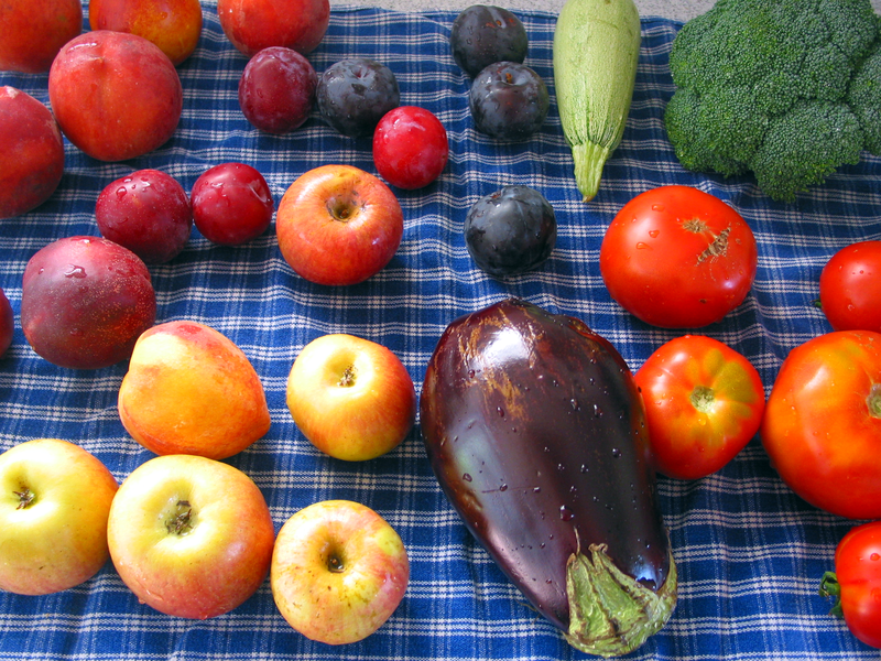 File:Fruits veggies.png