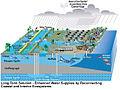 Future Drainage in South Florida.jpg