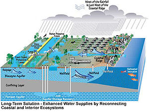 Color digital illustration of future water supply and management proposed by the Comprehensive Everglades Restoration Plan: some agricultural areas have been restored to their natural state, more wells are dug into the Floridan aquifer, and levee borders are present between the Everglades and South Florida Metropolitan Area