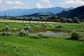 Görtschacher Moos 01 Obermoos, Europaschutzgebiet, Gailtal, Kärnten.jpg