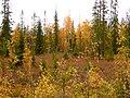 G. Apatity, Murmanskaya oblast', Russia - panoramio (15).jpg