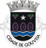GVA1.png