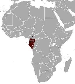 Gabon Talapoin area.png
