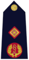Garda Deputy Commissioner.png