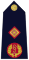 Rank insignia of Garda Deputy Commissioner