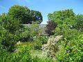 Garten und Facherkhaus in Pollitz.jpg