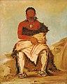 George Catlin - Lá-shah-le-stáw-hix, Man Chief, a Republican Pawnee - 1985.66.105 - Smithsonian American Art Museum.jpg