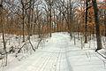 Gfp-minnesota-lake-maria-state-park-snowy-hiking-trail.jpg