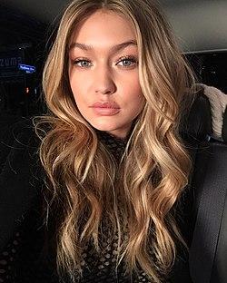 Gigi Hadid Syskon