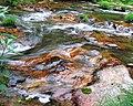 Ginzan water.jpg