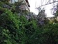 Giv'at HaMivtar, Jerusalem IMG 6606.jpg