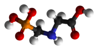 modello moleculare