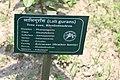 Godawari Botanical Garden (104).jpg