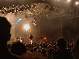 Golden Plains Festival (The Dirt Bombs).jpg
