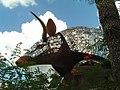 Goode's Armadillo Palace - panoramio - Akil Head.jpg