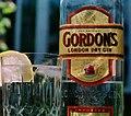 Gordon's Gin 2.jpg