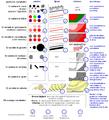 Grafische variabelen en hun toepassingemogelijkheden binnen de cartografie.PNG