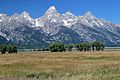 Grand Teton-Mormon Row 32.JPG