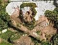 Gravestone detail in Ashkirk Church graveyard - geograph.org.uk - 343533.jpg